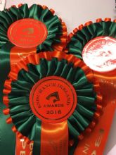 Two Tier Rosettes - Green & Orange
